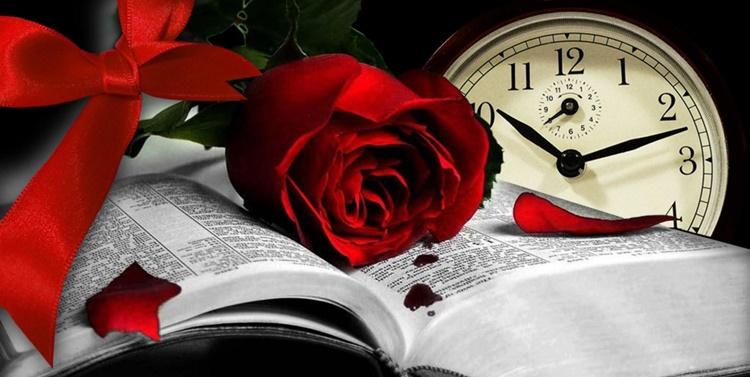Заговор на алую розу