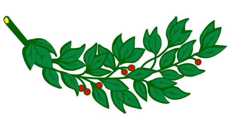 Ритуал с лавровым листом на любовь