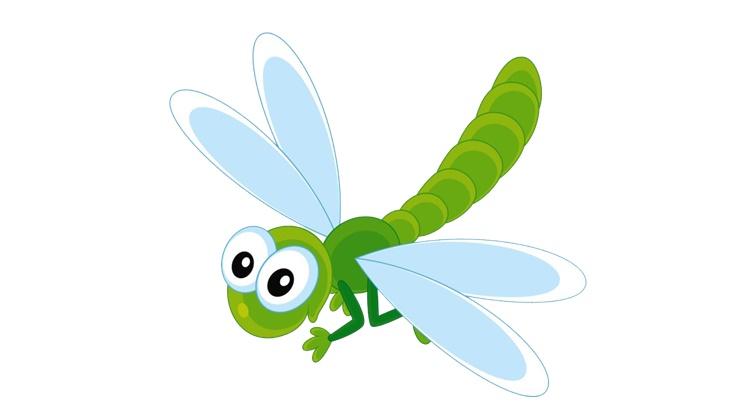 Заговор от насекомых вредителей
