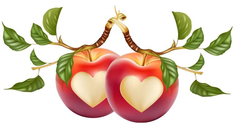 Ритуал на яблоко с гвоздикой